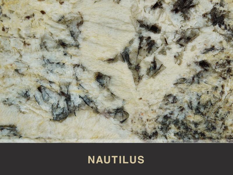 nautilus granite available at stoneworld ltd