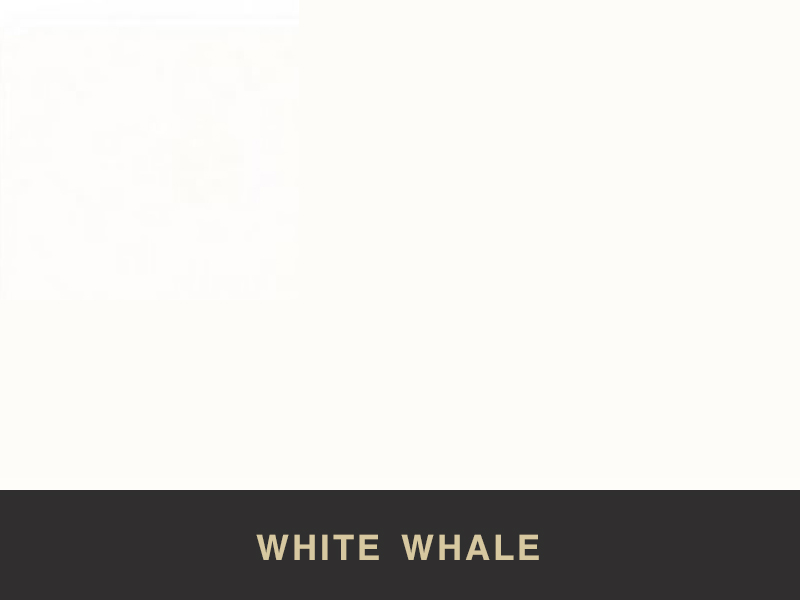 white whale tristone available at stoneworld ltd